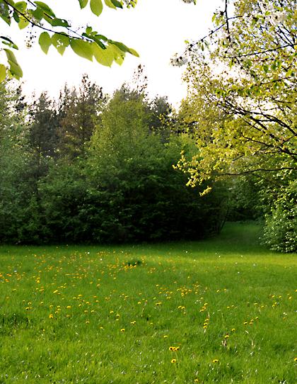 Tranbjerg Kirkegård