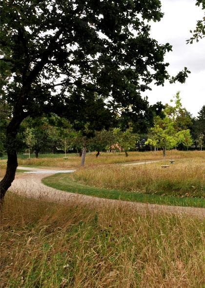 Ege Kirkegård – Naturkirkegård