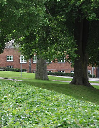 Sct. Peders Kirke i Randers