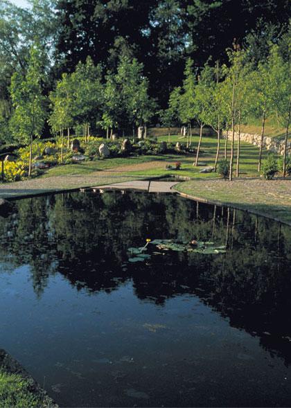 Ry Kirkegård – Skovafdeling