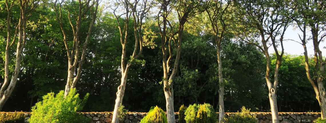 Lihme Kirkegård